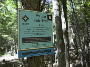 Plenty of side trail options